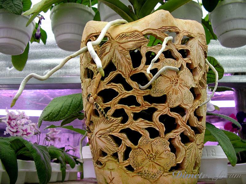 Горшки для орхидей своими руками 38